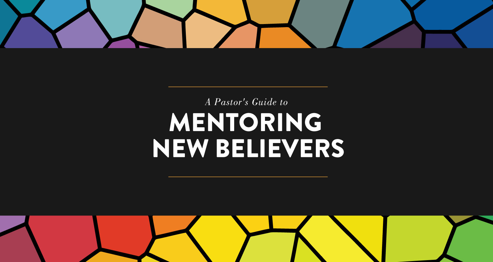 A Pastor's Guide to Mentoring New Believers
